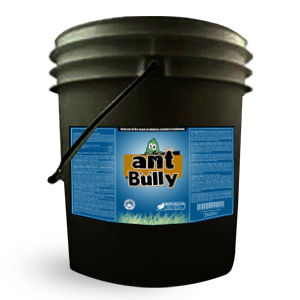 Ant Bully – Natural Spray For Ants 5 Gallon
