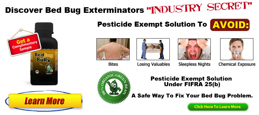 Bed Bug Exterminators Solution