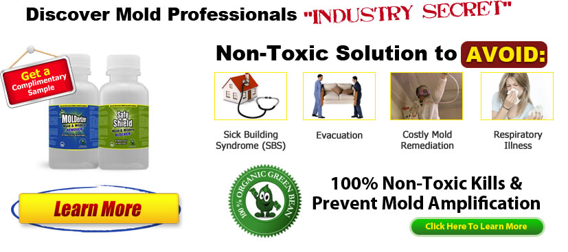 Mold Remediation Companies Secret Weapon