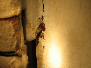 bedbugs-in-cracks-2