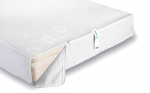 mattress encasement 300x187 Eight Tips to Keep Bed Bugs Off Your Apartment