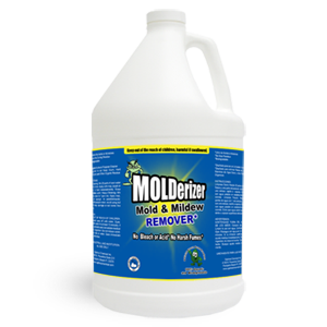 As They Are Both Organic Based And Effective Molderizer Safe Shield The Best Mold Removal Spray That You Could Get With Them Don T Have To