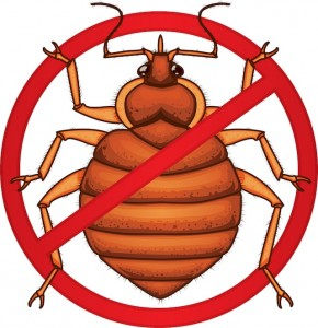 prevent-bed-bugs