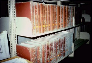 mold-in-books