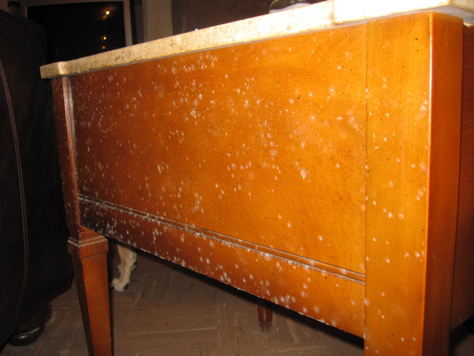 Mold Caused A Stir In Florida 39 S River Strand Community