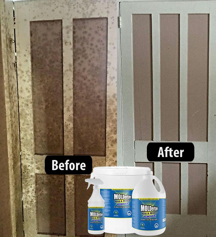 Non Toxic Mold Removal Product Molderizer 32 Oz